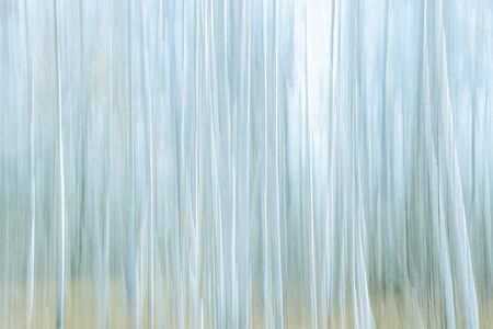 Abstract light vertical defocus stripy background, pale cold blue cyan gray frosty with copy space