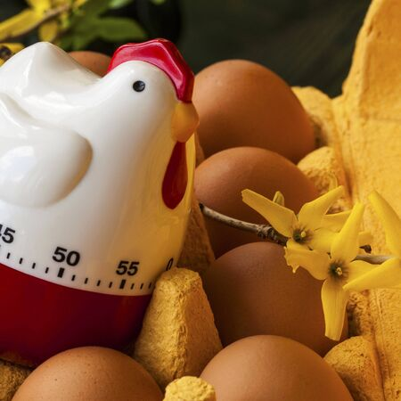 egg box: Cardboard egg box with  brown eggs and kitchen  timer