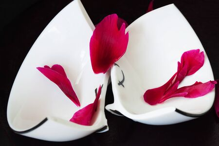 discord: Close up of a broken white ceramic cup on black background with red crumbled flower petals. Concept for divorce, relationships, friendships