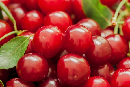 promotes: Appetizing, juicy, bright cherries closeup. Pulp cherry berries - tasty and healthy natural medicine with a broad spectrum of action