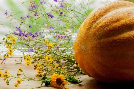 fleurs des champs: Whole melon, une plante de la famille des cucurbitacées, avec des fleurs sauvages colorées sur une table en bois rustique