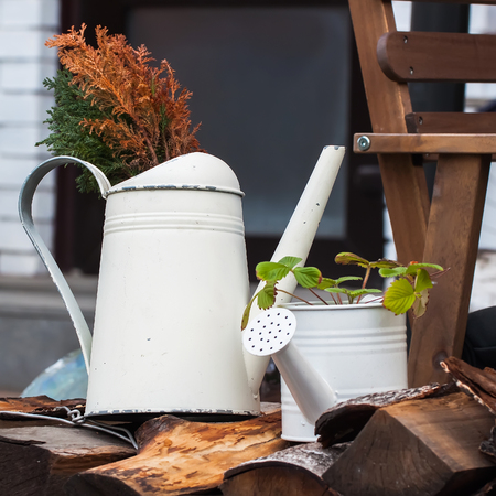 wateringcan: Old watering cans in the garden is decorated in a country style suburban area Stock Photo