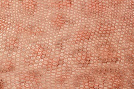 Spotted skin close up background, light brown color leopard skin imitation