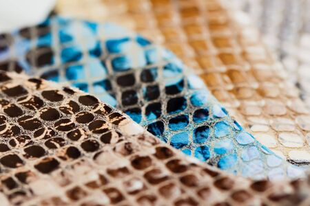 Genuine leather color samples, exotic texture. Selective focus.