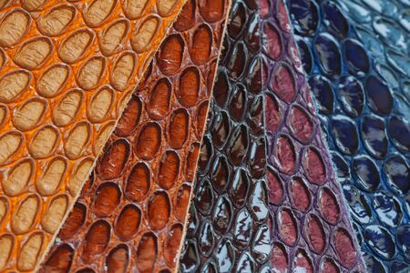 Genuine leather, color samples with Texture under the skin exotic reptile for fashion industry Stock Photo