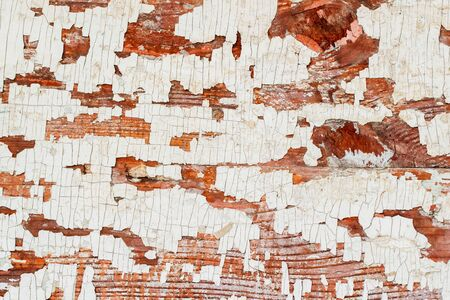 aged wood: Vintage wooden brown textured background with peeling paint white color. Place for your text