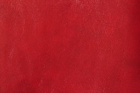 Texture of genuine leather close-up, cowhide. For your background, backdrop, with copy space