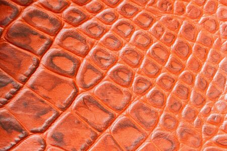 Texture of genuine leather close-up,embossed under the skin a orange brown crocodile. For modern pattern, wallpaper or banner design. With place for your text Stock Photo