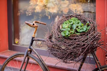 Vintage bicycle with decorative nest from twigs and fresh flowers near windows of old red house. Concept of beginning of spring, Easter, seasons and urban life Stock Photo