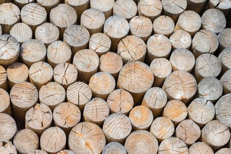 Pile of organik wooden logs with cross section of timber, firewood stack. Environmental concept. For natural design, patterns, background
