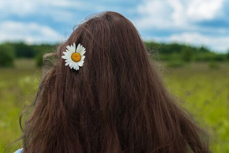 Back to us young girl standing with camomile flower in long hair. Concept of seasons, ecology, green planet, natural beauty, Healthy natural spa, hair care