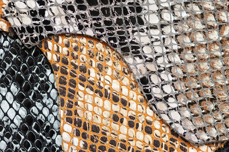 Colorful samples of genuine leather, embossed under the exotic skin reptilee, fashion industry concept. Texture pattern for background 版權商用圖片