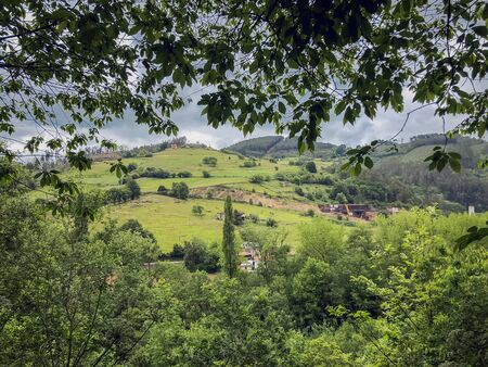 Summer landscape with green hills, rural country, view through branches Imagens - 125431218