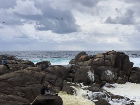 Unrecognizable photographers on a large sea stones taking photos of beautiful seascape, splash of waves Imagens