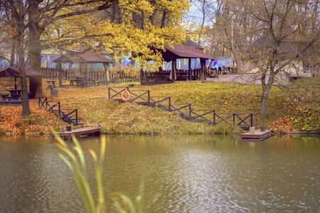 Autumn pond. Fallen leaves. Empty park , sunny day, natural background. Autumn nostalgic mood Imagens