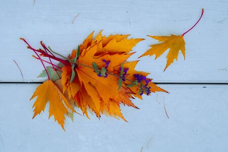 Bright bouquet of orange autumn fallen leaves and violet flower close-up in the park on light wooden bench. Flat lay. Top view. Concept of leaf fall, autumn, season