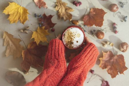 Womens hands in a red wool pullover holding a cup of coffee with milk, cappuccino among autumn colorful faded leaves, acorns, chestnuts, nuts. Concept of leaf fall, fall
