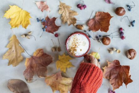 Female hand in red wool pullover holding a cup of coffee with milk, cappuccino and cinnamon among autumn colorful faded leaves, acorns, chestnuts, nuts