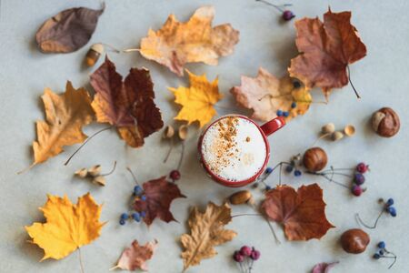 Cup of coffee with milk, cappuccino among autumn colorful faded leaves, acorns, chestnuts, nuts. Concept of leaf fall, autumn, season