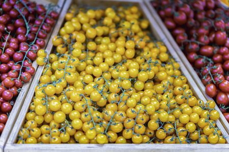 Fresh organic multicolored cherry tomatoes. Farmers market counter with heap of live vitamins, selectiv focus. Vegeterian food, harvest