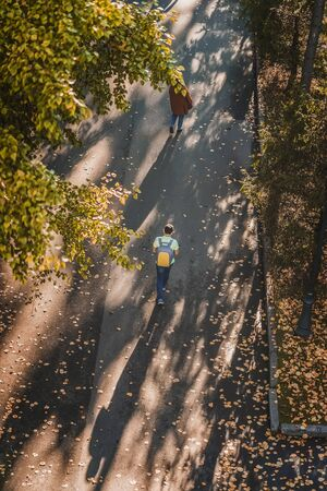 Autumn sunny day, walking people, park alley dotted with fallen leaves, yellow foliage of trees, top view. Color, light and shade of autumn, blurred background Imagens
