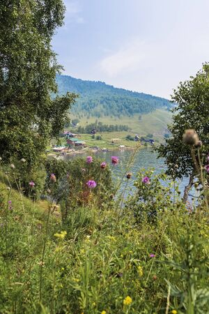 Summer picturesque sunny day, village and the lake among the hills, greenery and flowers. Country view scenery Imagens