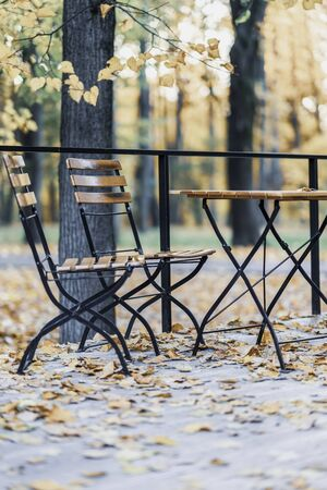 Fall. Wooden table and chairs in the empty autumn park, fallen maple leaves. Autumn mood concept Imagens - 129626236