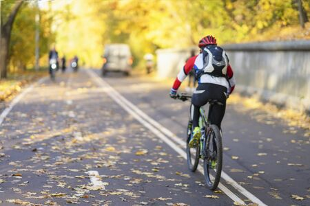 Unrecognizable guy, back to us riding bike in autumn park, bright colorful trees, sunny day, fall foliage. Healthy lifestyle, leisure activity Imagens