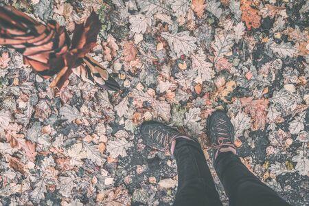 Vintage autumn background, pair of legs in sport sneakers and orange umbrella on bright fallen leaf, fall concept. Seasons, autumn walk, nostalgic mood Imagens