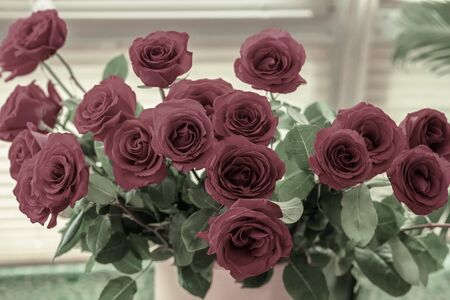 Bouquet of dark red roses, vintage natural background for all occasions