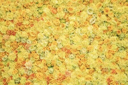 Floral background. Bright fresh yellow flowers of roses, colorful natural composition
