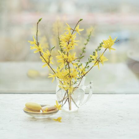 Window, windowsill, delicious macarons and spring yellow flowers in glass vase, still life on a light background