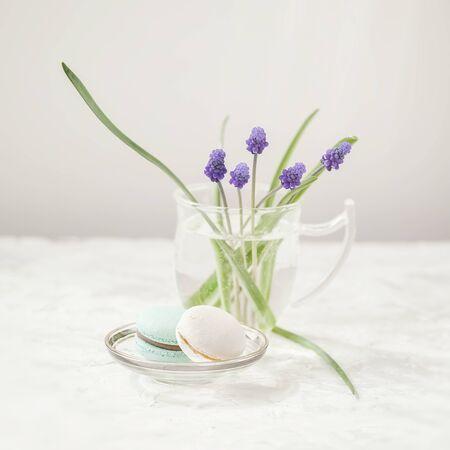 First spring blue flowers. Delicate tender primroses on light background. Romantic morning, gift for beloved Imagens