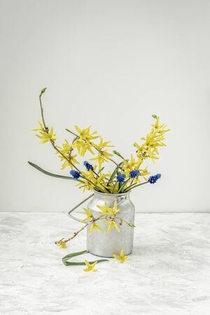 Spring flowers in yellow and blue, green branches in an old metal jug, still life, on light background, copy space