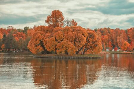 Autumn landscape, island in the lake, panorama of island with golden vivid trees, bright autumn colors. Colorful scenery in the evening