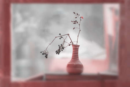 Autumn bouquet of dry branches with berries in a ceramic vase in a wooden window. Abstract blurred background, selective focus. Concept of leaf fall, seasons, lifestyle, country life in a cottage Standard-Bild