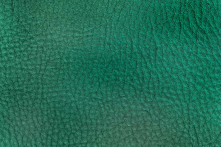 Texture of genuine leather close-up, bright green color, trendy background Standard-Bild
