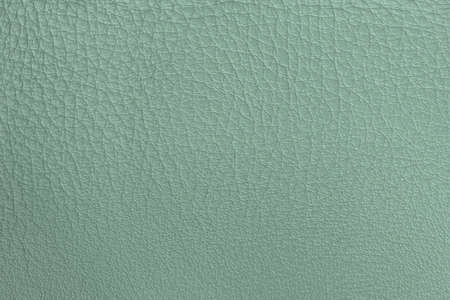 Texture of genuine leather close-up, delicate shade of salad green color, matte surface, trendy background, copy space