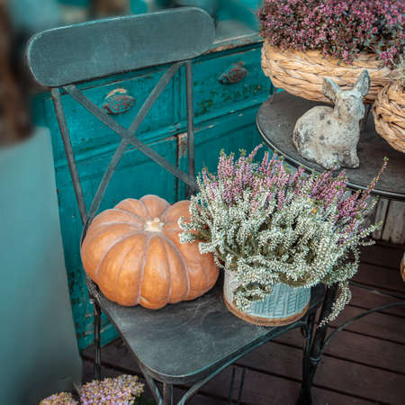 Autumn arrangement with pumpkin and erica flowers on vintage chair, rural style furniture. Fall harvest and decor.