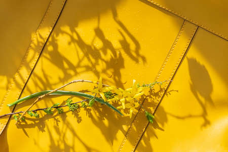 Background of yellow handbag and bouquet of blue and yellow flowers and shadows on sunny day. Concept of spring or summer shopping Standard-Bild