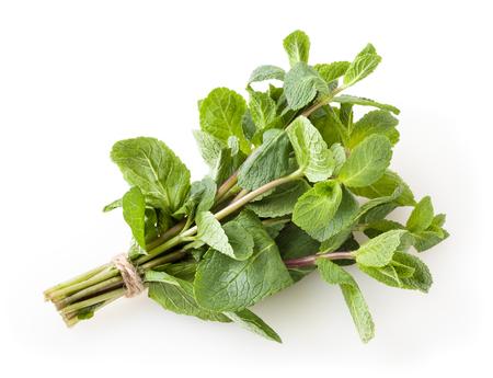 Fresh mint leaves isolated on white background Reklamní fotografie