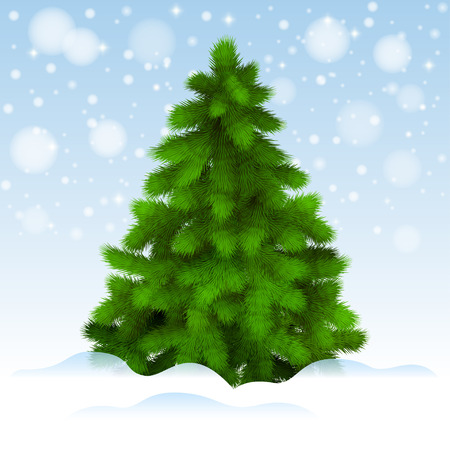 christmas tree illustration: Christmas tree, realistic vector illustration Illustration