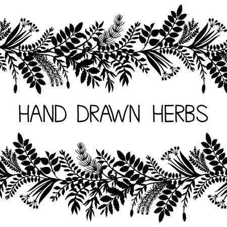 fashion design sketch: Hand drawn horizontal border of herbs and plants, vector illustration