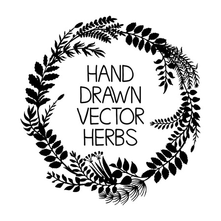 Hand drawn wreath of herbs and plants, vector illustration Stock Illustratie
