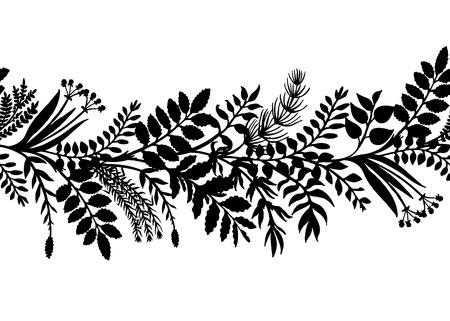 手でハーブと植物、ベクトル図の水平方向の境界線を描画