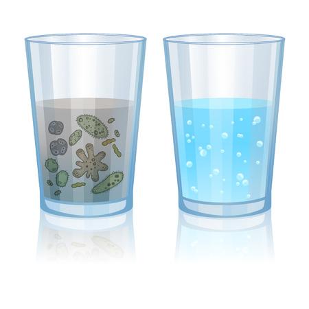 contaminacion del agua: Vidrio con agua limpia y sucia, ilustración infección. Ilustración vectorial
