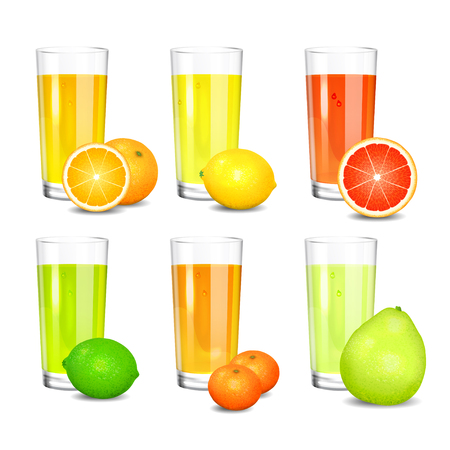 squeezed: Set of fresh citrus juices. Realistic tall glasses with squeezed citrus juices. Citrus fruits (orange, lemon, lime, grapefruit, pomelo, mandarin).