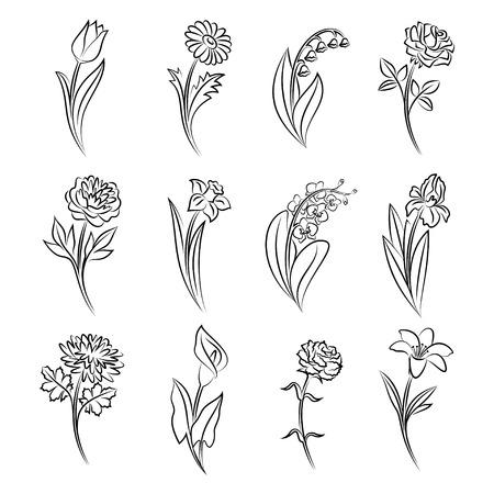 Colección de flores esbozados. Tulipán, manzanilla, lirio de los valles, rosa, peonía, narcisos, orquídeas, iris, crisantemo, cala, clavel y lirio en estilo croquis dibujado a mano. ilustración vectorial