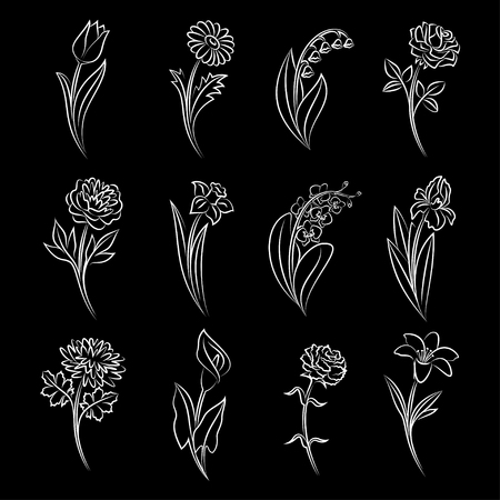 lily flowers collection: Collection of outlined flowers. Tulip, chamomile, lily of the valley, rose, peony, narcissus, orchid, iris, chrysanthemum, calla, carnation and lily In sketch hand drawn style. Vector illustration Illustration
