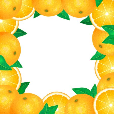 dewdrops: Frame of fresh oranges. Natural bio fruits, healthy organic food. Realistic vector illustration Illustration